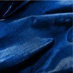 Dharmissima Bold Blue